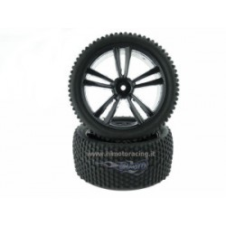 Coppia Gomme BUGGY TANTO HIMOTO 1-10