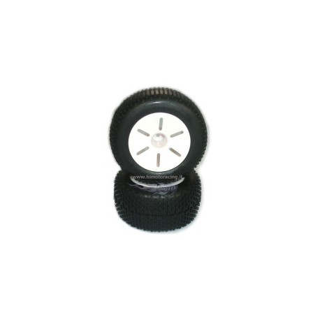 Gomme Complete HIMOTO 1-10 Truggy